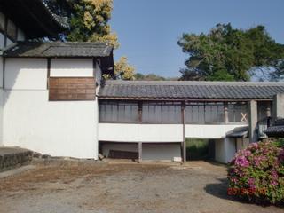 20130513 takaroka1.jpg